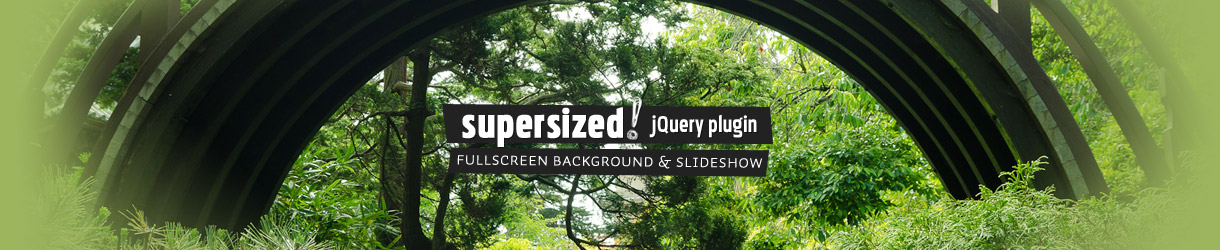 Supersized 3 2 – Fullscreen Slideshow jQuery Plugin « Build Internet